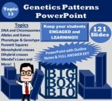 Biology PowerPoint Notes: Mendelian Genetics, Punnett Squa