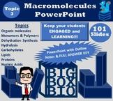 Biology PowerPoint Notes: Organic Macromolecules, Monomers