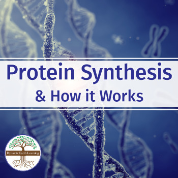Biology-Protein Synthesis: FuseSchool Biology Video Guide