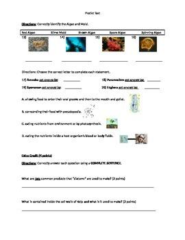 Biology: Protist (Visually Adapted for ELL/ESL) Summative Exam