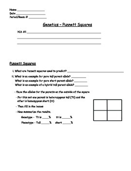 Genetics - Punnet Squares Worksheet