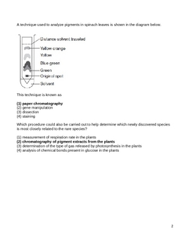 High School Biology Question Bank - Paper Chromatography