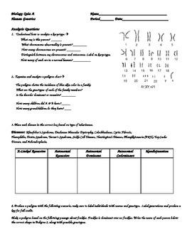 Biology Quiz Human Genetics