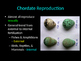Biology! Animals: Reproduction