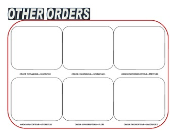 Biology Research Project - insect collection sheets all 29 orders classifying