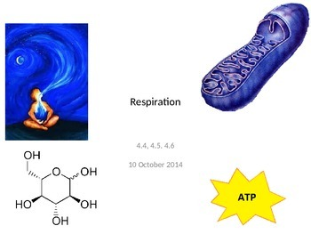 Biology - Respiration and Fermentation