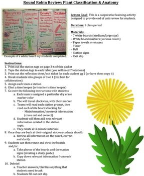 Biology Review Activity: Plant Classification & Anatomy (with Exit Slips)