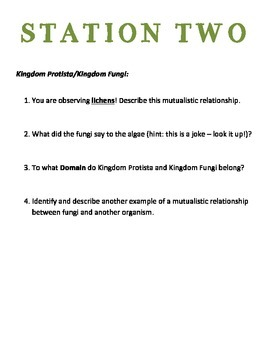Biology Review - Eukaryotic Kingdoms Look and Touch Stations (with ANSWER KEY!)