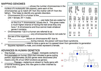Biology Review (Full Year for EOC Exam)