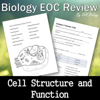 Biology EOC Review - Cell Structure and Function