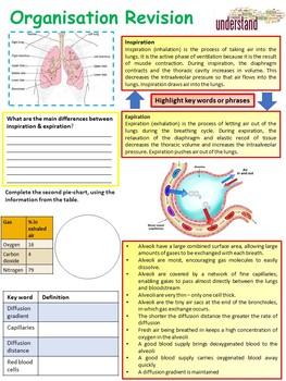 Biology(Science) Biological Organisation Revision Workbook
