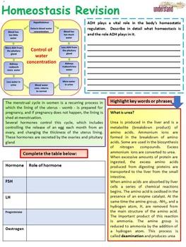 Biology (Science) Homeostasis Revision Workbook