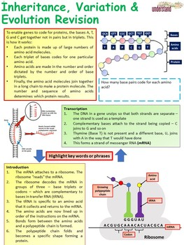 Biology (Science) Inheritance, Variation & Evolution Revision Workbook