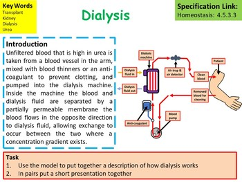 Biology (Science) Kidney Failure Lesson & Activities