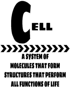 Biology Scientific Alphabet