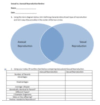 Biology Sexual vs. Asexual Reproduction Comparison Worksheet