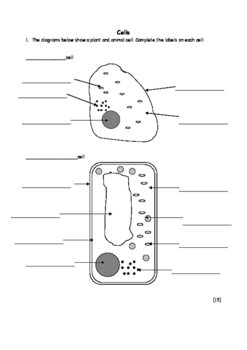 Biology: Simple cells