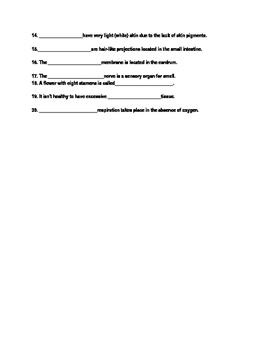 Biology Sub Plan: Vocabulary Practice
