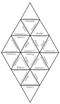 Biology Tarsia Puzzle: Human Reproduction