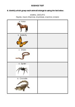 Biology Test - Year 3/4