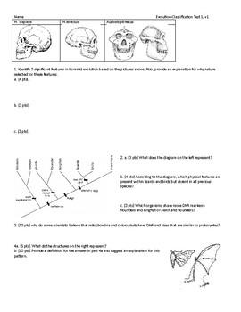 Biology Test - Evolution