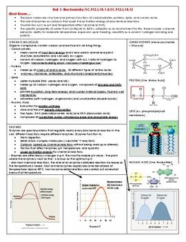 Biology EOC/Test prep review book by Dorff Bio | TpT