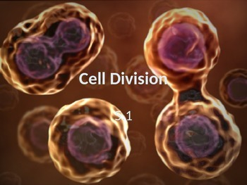 Biology - The Cell Cycle