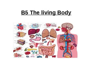 Biology - The Living Body