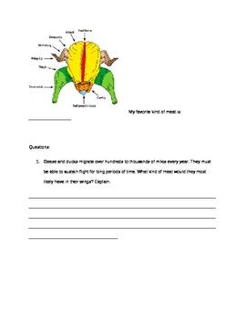"Biology Turkey Quick-Study- ""Turkey-Lurkey"""