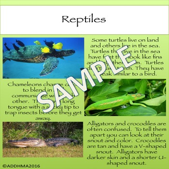 Biology Unit & Interactive Notebook: 6 Types of Animal Groups Grades 2-4 Science