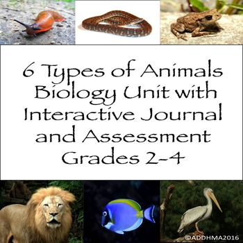 Biology Unit & Interactive Notebook: 6 Types of Animal Gro