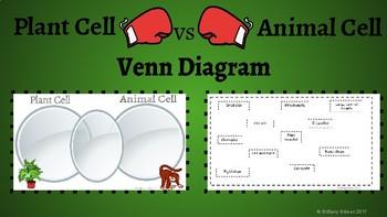 Biology Venn Diagram Bundle