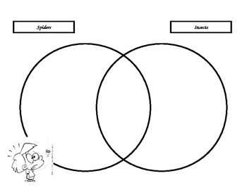 Biology Venn Diagram Insects vs. Spiders