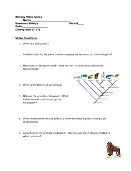 Biology Video Guide Bozeman Biology Cladograms