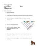 Biology Video Guide Bozeman Biology Cladograms