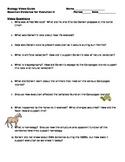 Biology Video Guide Bozeman Evidence for Evolution II