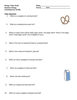 Biology Video Guide & Key Bozeman Biology Carbohydrates