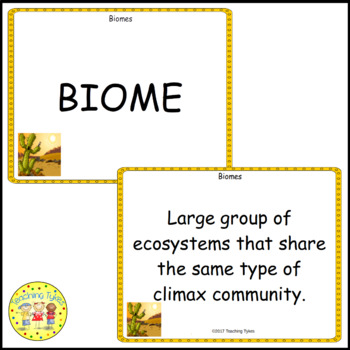 Biology Vocabulary Cards