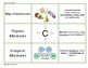 Biology Vocabulary Game Cards--Biomolecules and Enzymes