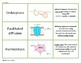 Biology Vocabulary Game Cards--Cell Structures and Processes
