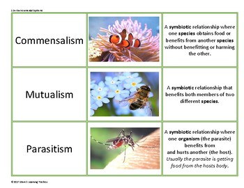 Biology Vocabulary Game Cards--Environmental Systems (Ecology)