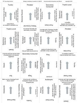 Biology Vocabulary Scramble Game: Environmental Interactions (B.12BCDF)