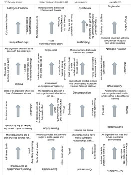 Biology Vocabulary Scramble Game: Microorganisms (B.11C)