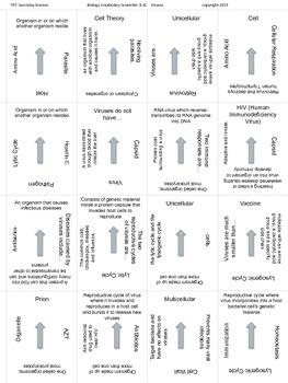 Biology Vocabulary Scramble Game: Viruses (B.4C)