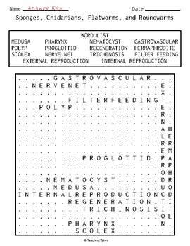 Sponges Cnidarians Flatworms Roundworms Word Search