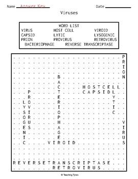 Viruses Word Search