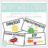 Biology Word Wall Cards - Photosynthesis and Cellular Respiration