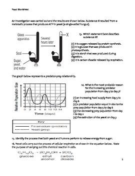 High School Biology Worksheet - Cellular Respiration