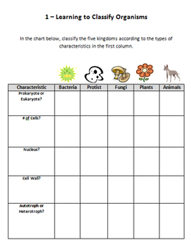 Biology Worksheets - Classifying, Plants, Fungi, Metamorphosis