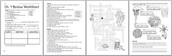 Biology / Zoology – Phylum Cnidaria and Ctenophora Review Worksheet